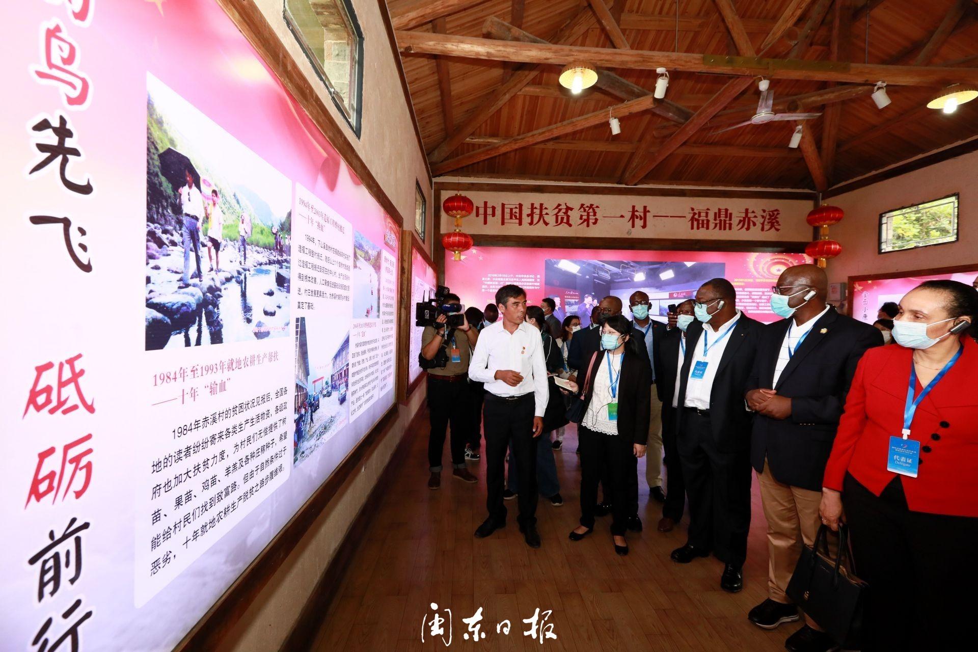 今天,福鼎赤溪村来了一批国外友人