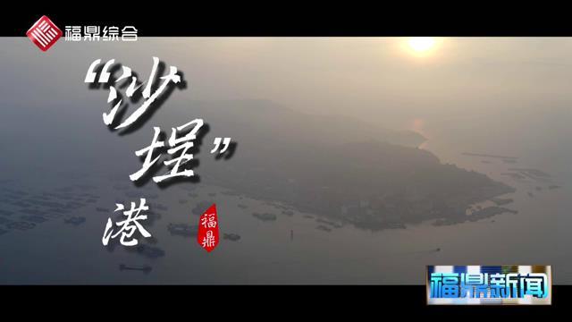 【短视频】沙埕港