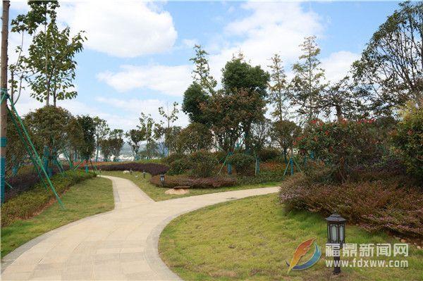 """加快公园绿地建设 城市生态魅力从""""美丽一隅""""到""""星罗棋布"""""""