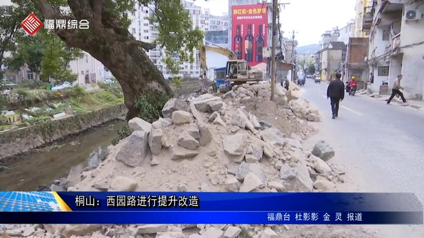 桐山:西园路进行提升改造