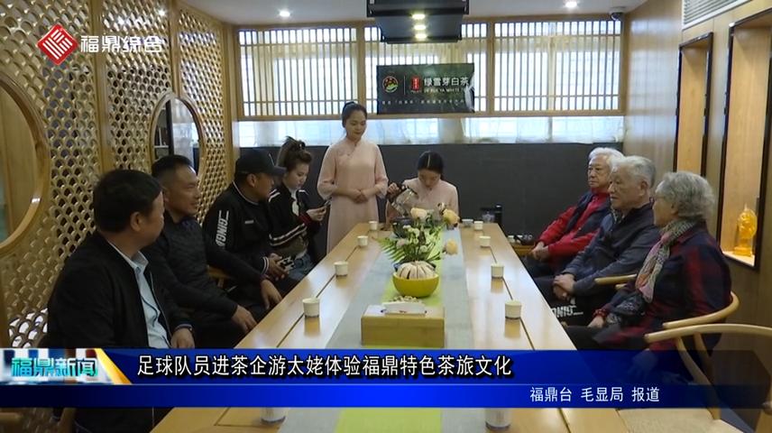 足球队员进茶企游太姥体验福鼎特色茶旅文化