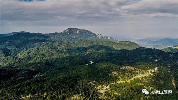 太姥山•白茶山 | 孔屏:寻访白茶山