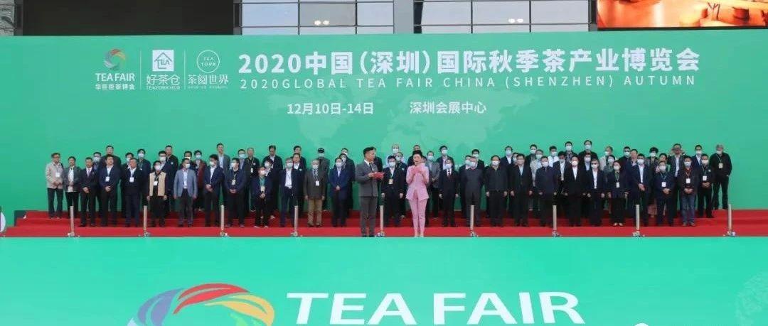 收官之展,福鼎白茶在深圳茶博会上站C位