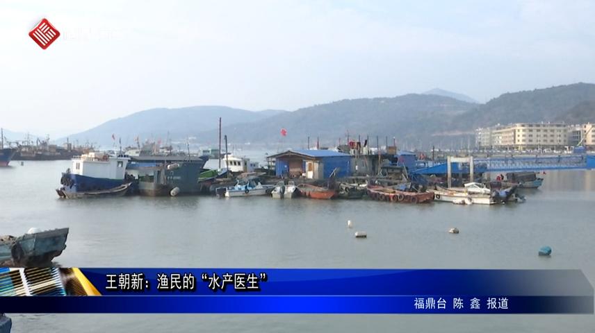 """王朝新:渔民的""""水产医生"""""""