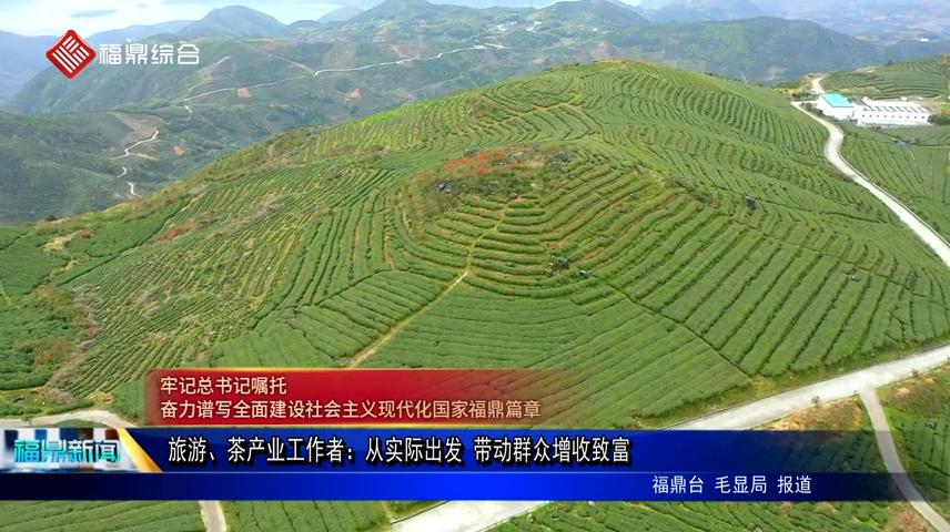 旅游、茶产业工作者:从实际出发 带动群众增收致富