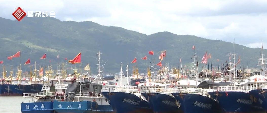 """台风""""烟花""""逼近,福鼎海上防台模式已启动!"""