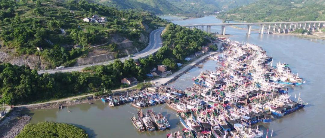 渔船进港避风,渔民加固渔船全力防范台风!
