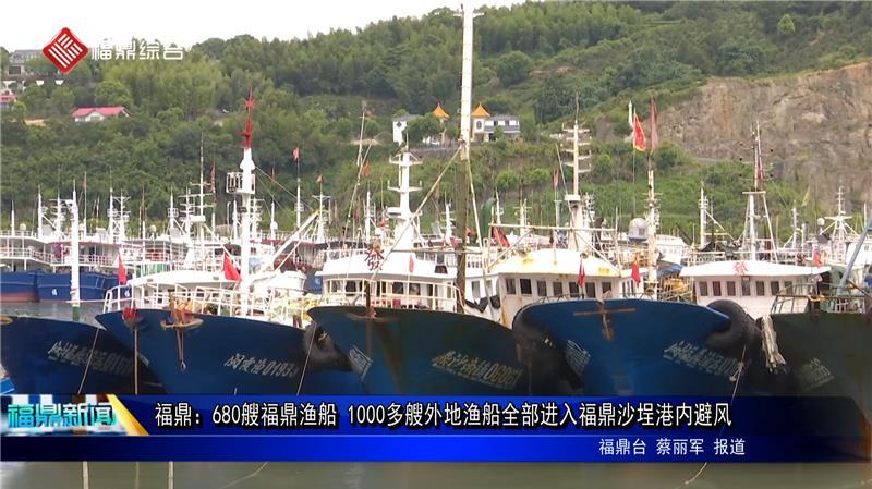 福鼎:680艘福鼎渔船 1000多艘外地渔船全部进入福鼎沙埕港内避风